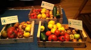 fruta-feia