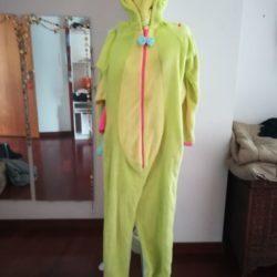 Pijama/onesie/fato carnaval minhoca 3